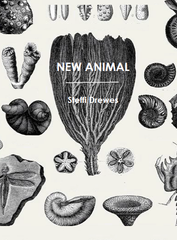 New Animal | Steffi Drewes