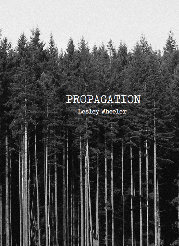 Propagation | Lesley Wheeler