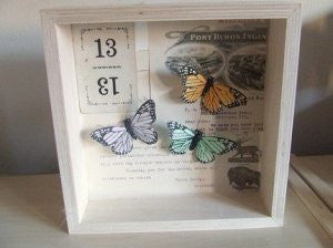 butterfly trio shadowbox / assemblage