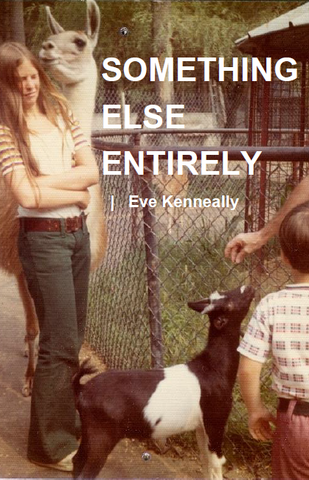 Something Else Entirely | Eve Kenneally