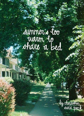 summer's too warm to share a bed |  liz chereskin & sara peck