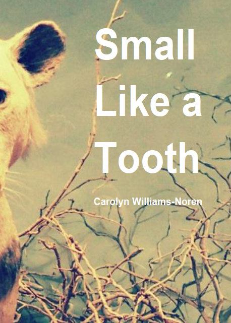 Small Like A Tooth / Carolyn Williams-Noren