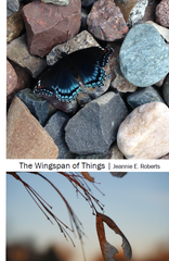 The Wingspan of Things | Jeannie E. Roberts