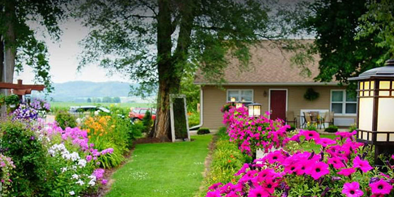 Prepare Your Home for Spring with These 5 Maintenance Tips