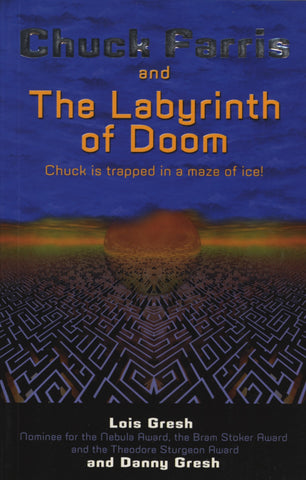 Chuck Farris and the Labyrinth Of Doom: An Action Story about PlayStation2 - ECW Press