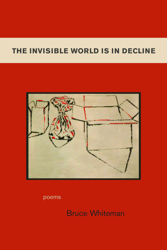 The Invisible World Is In Decline - ECW Press