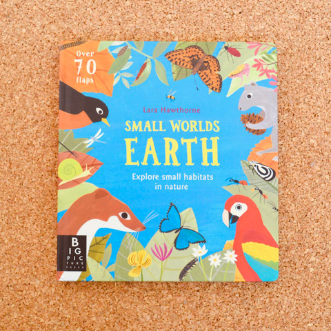 Small World's: Earth
