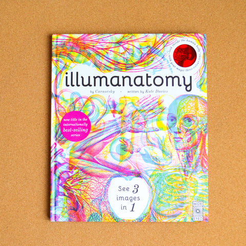 Illumanatomy