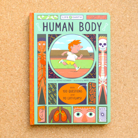 Life on Earth: The Human Body