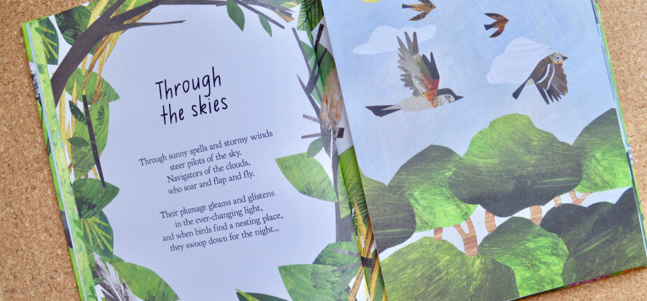 A Walk-Through Nature: A Peek-through Book