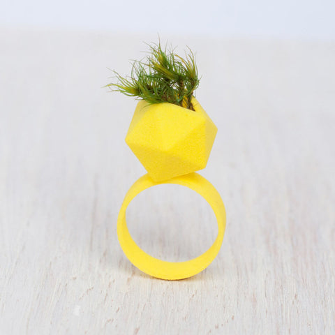 Icosahedron Wearable Planter Ring