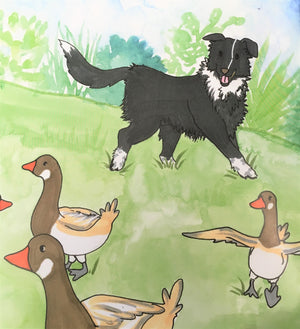 Luke the Border Collie: My Working Years by Luke and Sister Mary Foley, SSND