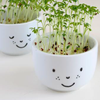 Family Fun | Plant Cups with a Face