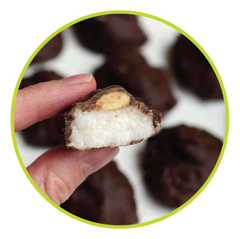 Almond Joy Healthy Candy