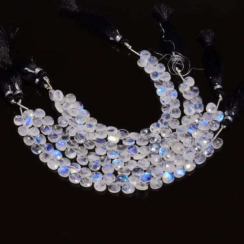 Moonstone Collection