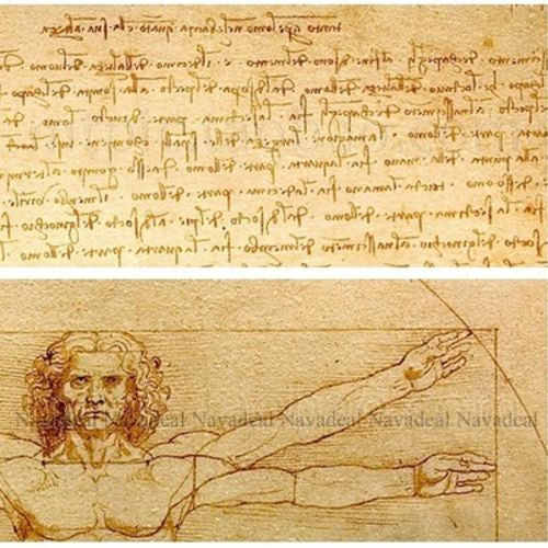 Da Vinci Vitruvian Manuscript Vintage Print Decorative Cotton Canvas Wall Poster