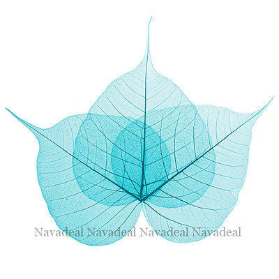 Light Blue Wood Tree Plant Leaf Art Decorative Canvas Wall Poster Picture