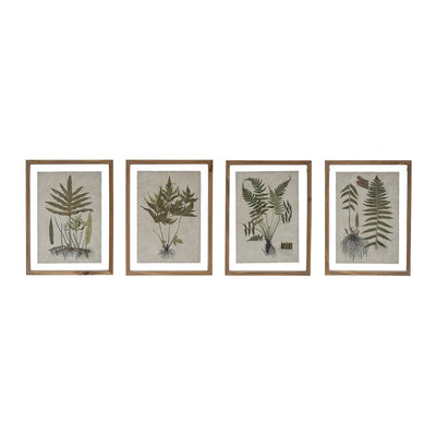 Wood Framed Wall Decor w/ Botanical Print