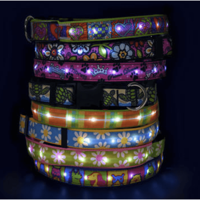 Orion LED Dog Collar - Zenogram Shop LLC