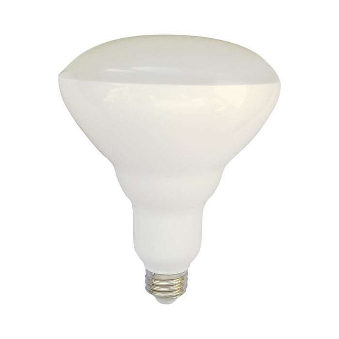 BR30 Frosted LED - 9w