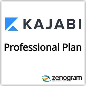 Zenogram Zenogram Service Kajabi Professional Website Plan