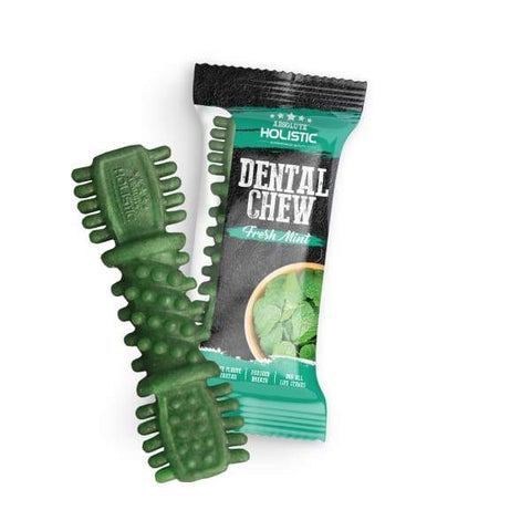 Absolute Holistic Absolute Holistic Fresh Mint Dental Dog Chew 4 Inch (25g) Dog Food & Treats