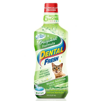Synergy Labs Synergy Labs Dental Fresh Cat 8oz Cat Healthcare