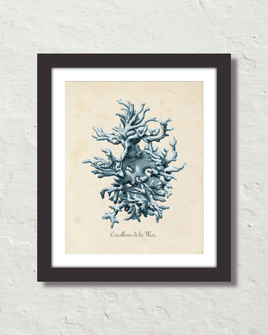 Les Coralliens Blue Sea Coral No. 1 Art Print