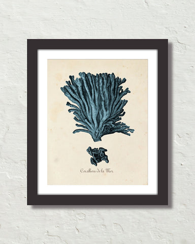 Les Coralliens Blue Sea Coral No. 2 Art Print
