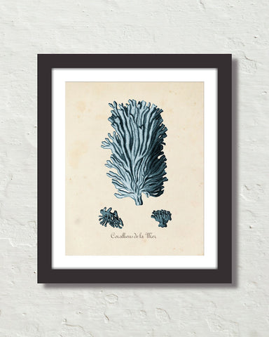 Les Coralliens Blue Sea Coral No. 3 Art Print
