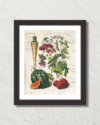 French Vegetable Collage No. 2 Botanical Art Print