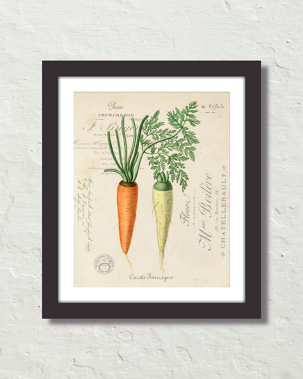 Vintage French Carrot Collage Art Print