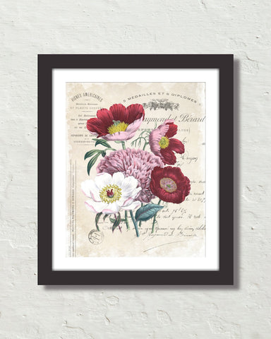 French Floral Collage No. 32 Botanical Art Print
