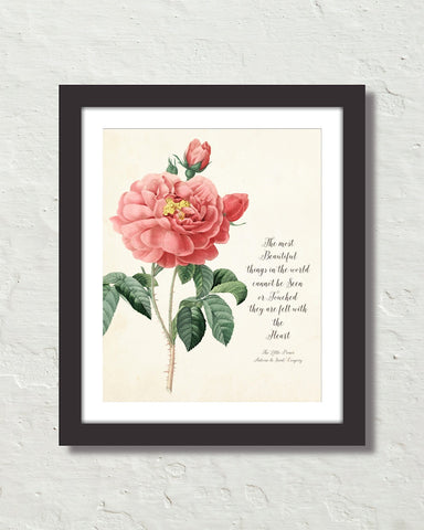 The Little Prince Quote Typographic Rose Botanical Art Print