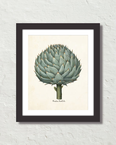 Antique Artichoke Giclee Art Print