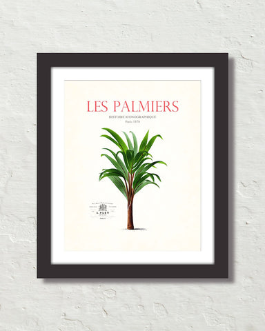 Les Palmiers Vintage French Palm Tree Collage No. 15