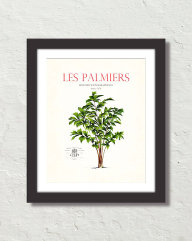 Les Palmiers Vintage French Palm Tree Collage No. 21