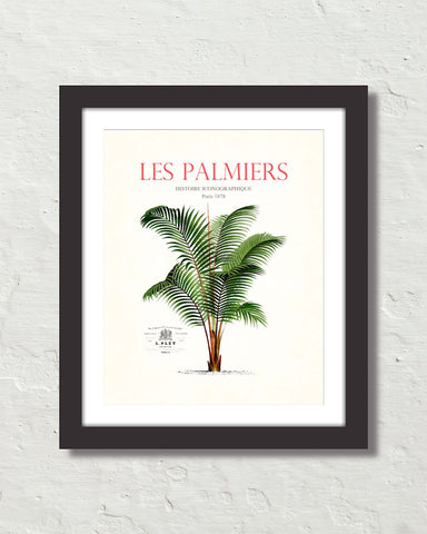 Les Palmiers Vintage French Palm Tree Collage No. 30
