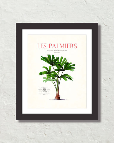 Les Palmiers Vintage French Palm Tree Collage No. 35