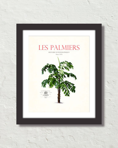 Les Palmiers Vintage French Palm Tree Collage No. 39
