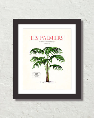 Les Palmiers Vintage French Palm Tree Collage No. 7