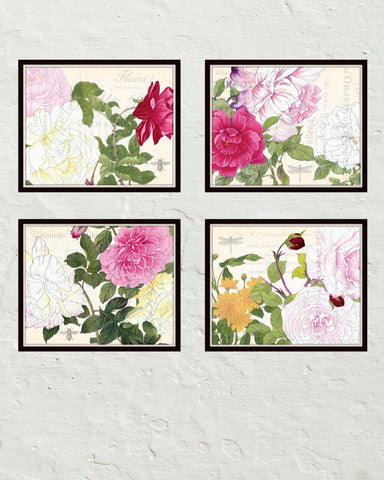 Garden Study Plate Canvas Art Print Set