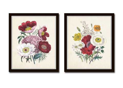 Botanical Floral Print Set No. 32