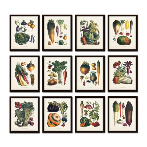 French Vegetable Print Set No. 12