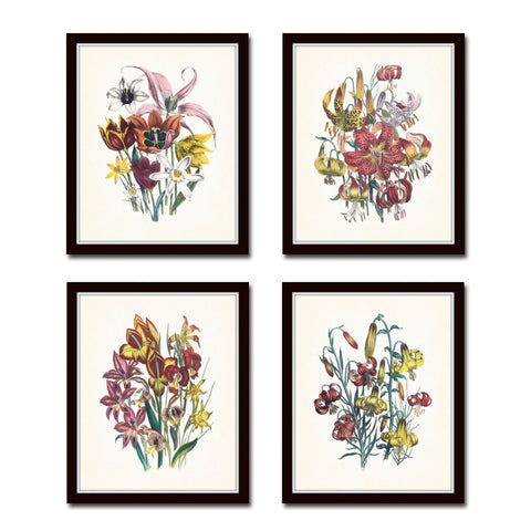 Vintage Wildflowers Botanical Print Set No. 9