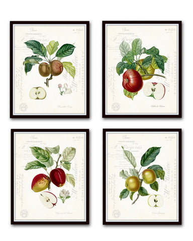 French Apple Collage Print Set