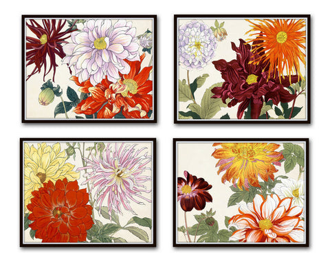 Garden Study Series 2 Botanical Collage Set of 4 Prints