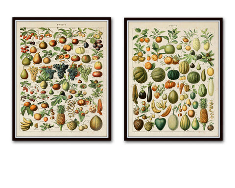 Vintage French Fruits Print Set