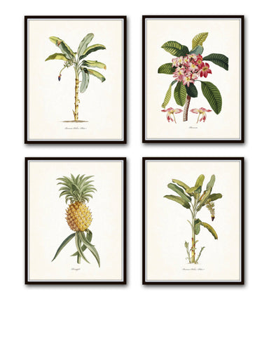 Tropical Botanical Print Set