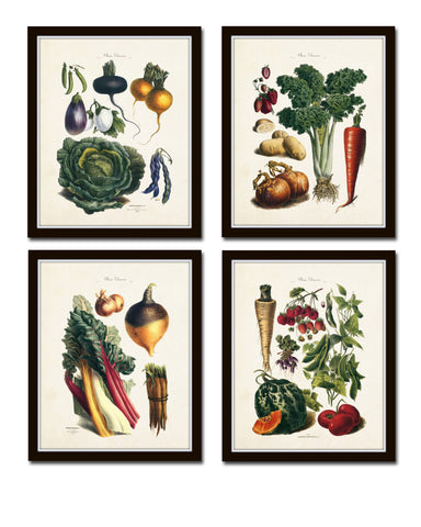French Vegetable Print Set No. 8